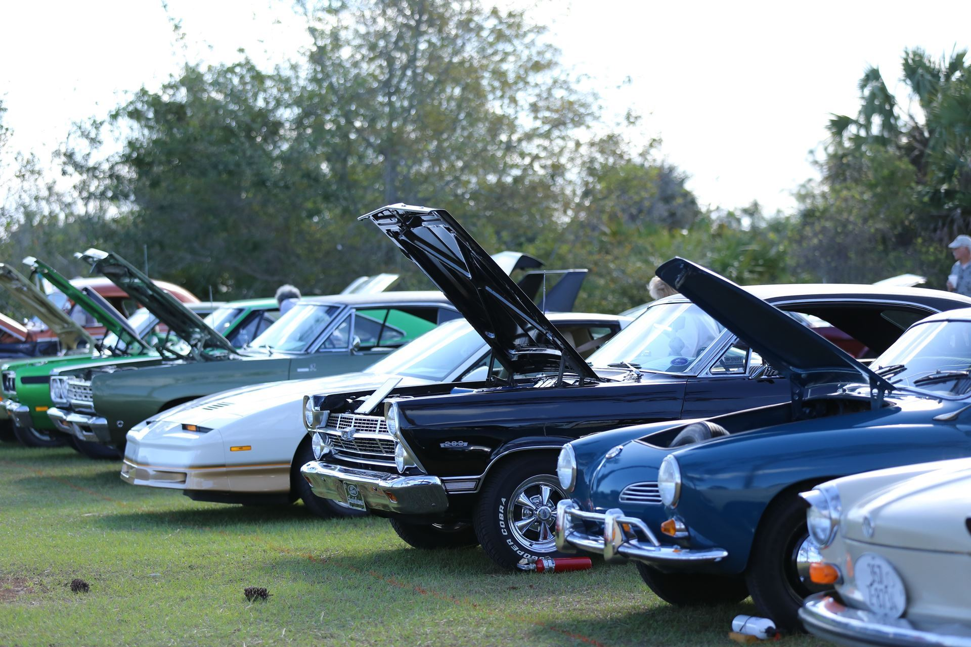 Antique Automobile Club Of Cape Canaveral Show - Wickham park car show melbourne fl